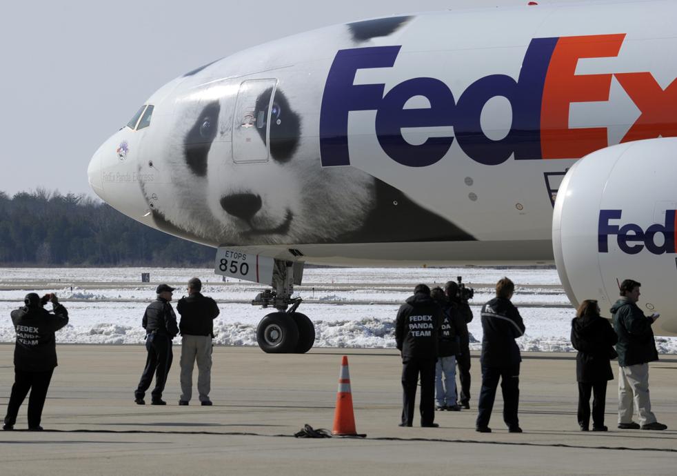 FedEx Storyteller
