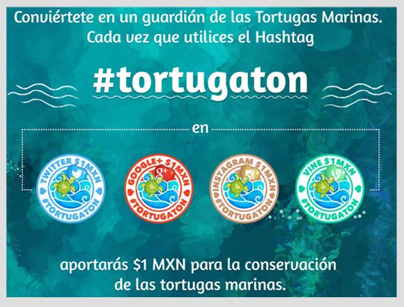 Tortugaton 2014