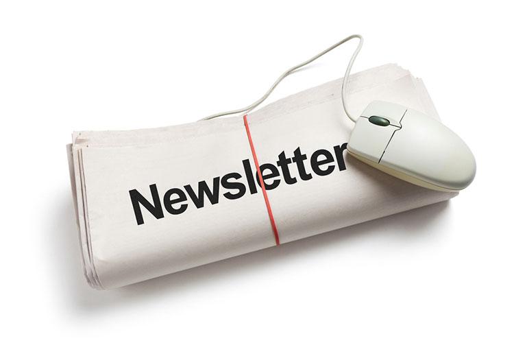Como hacer un newsletter