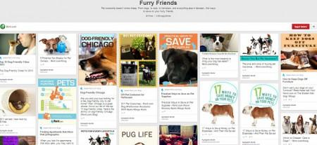 Furry-Friends