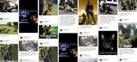 Perros-policias