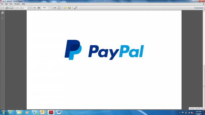 Estudio de Pay Pal