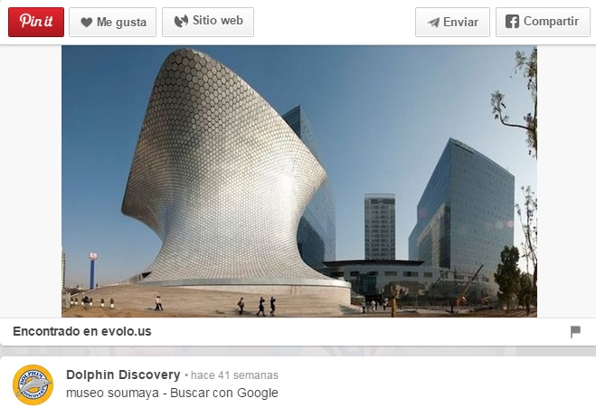 Ultimo-pin-de-DolphinDiscovery