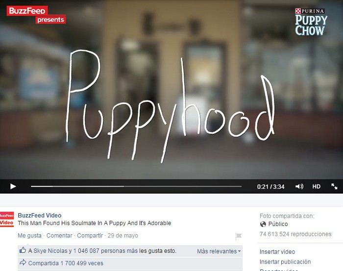 Ejemplo-video-de-BuzzFeed2