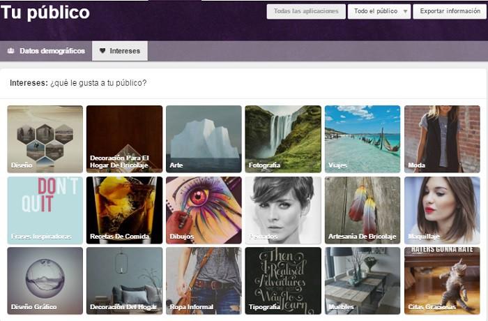 Intereses-de-tu-publico-en-Pinterest