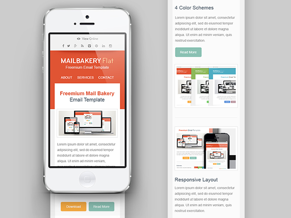 Newsletter adaptado a mobile