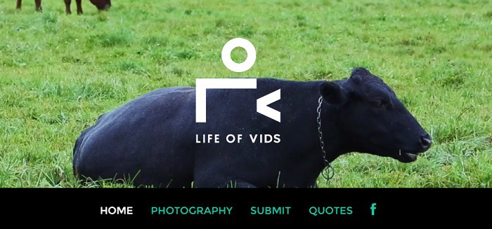 life-of-vids