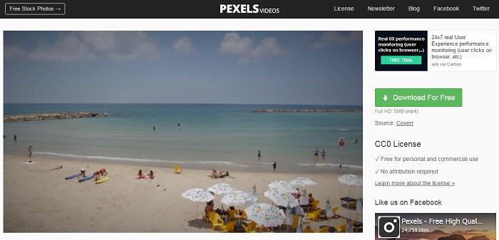 pexels-ejemplo