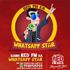 hacer mercadotecnia con whatsapp